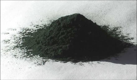 Blue Green Algae Bulk Powder